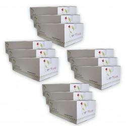 """12 Cartons de Briques de mousse """"PierMouss"""" STANDARD"""