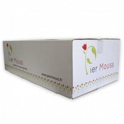 """3 Cartons de Briques de mousse """"PierMouss"""" STANDARD"""