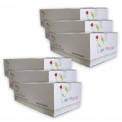 """6 Cartons de Briques de mousse """"PierMouss"""" STANDARD"""